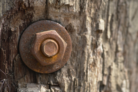 Old rust nut on wooden pole, building wood material outdoors.