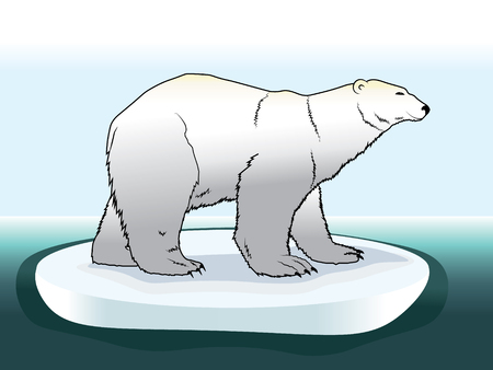 The illustration of a colored polar bear on ice in the Arctic. Animal cartoon drawing illustration. EPS 10 Illustration
