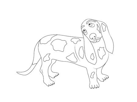 The illustration of isolated British Basset Hound dog silhouette. Outline for the coloring book 向量圖像