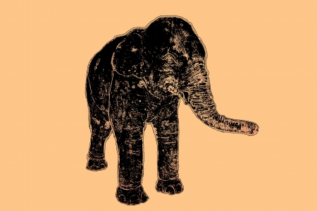 grudge: Elephant illustration with grudge style art from my photo     Stock Photo