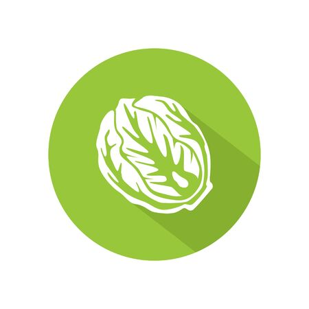 Cabbage or lettuce icon vector. illustration of cabbage or lettuce isolated on green circle. healthy vegetable, nutrition icon Ilustração
