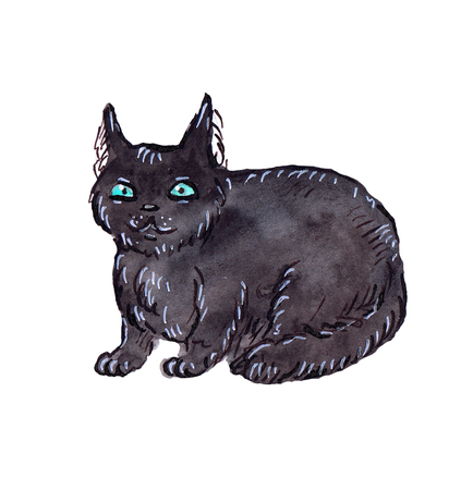 Watercolor black cat Lucy Stock Photo