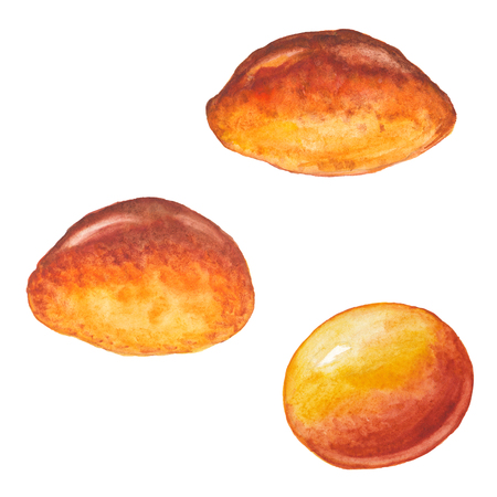 Three watercolor rosy appetizing sweet roll on a white background