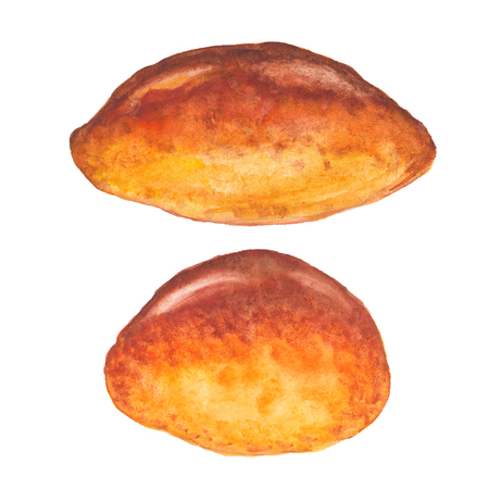 Two watercolor rosy appetizing pies on a white background