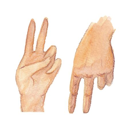 watercolor illustration of two hand on a white background