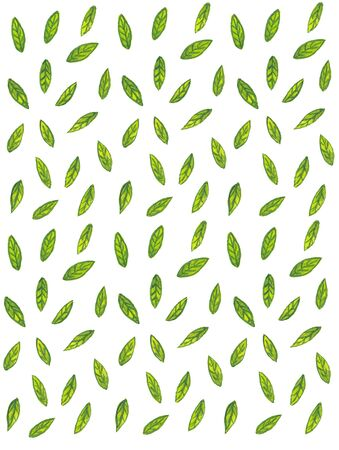 watercolor pattern with green leaves and branches on a white background Standard-Bild