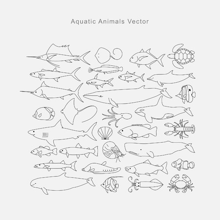 aquatic: Drawing aquatic animals, vector Illustration