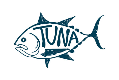 tuna fish: Draw tuna fish, vector