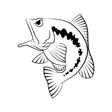 dibujos lineales: Símbolo de pesca Bass sobre fondo blanco, vector.