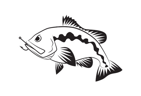 bass fish: Bass fish symbol on white background,Vector.