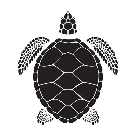 schildkröte: Graphic Meeresschildkröte