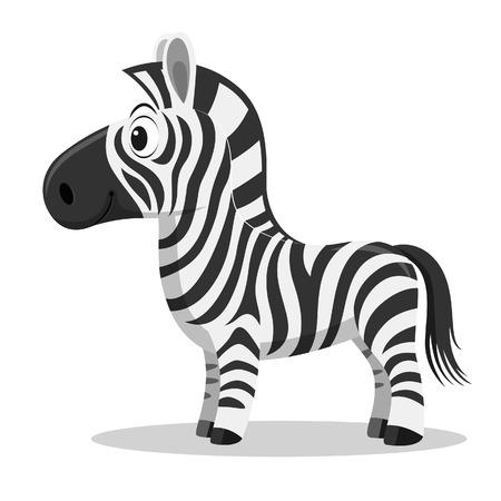 jovial: Cartoon Zebra Illustration