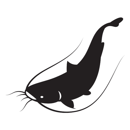 catfish: graphic catfish, vector