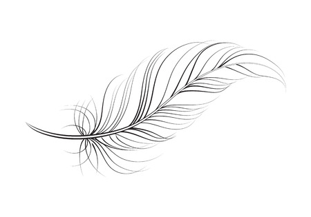 clip art feather, vector