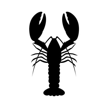 A graphic lobster, vector illustration. Çizim