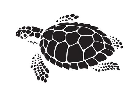graphic sea turtle, vector