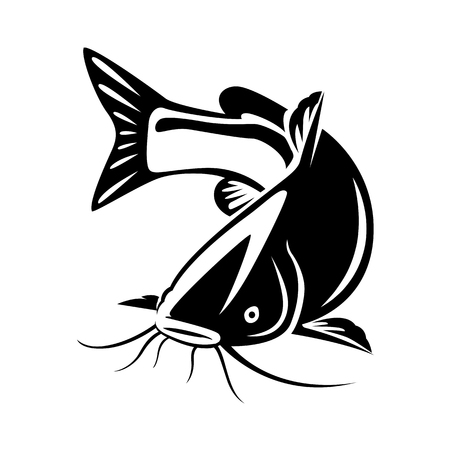 graphic catfish on white background, vector Illustration