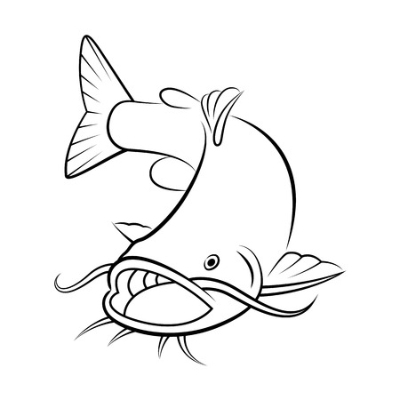 graphic catfish on white background, vector Illustration