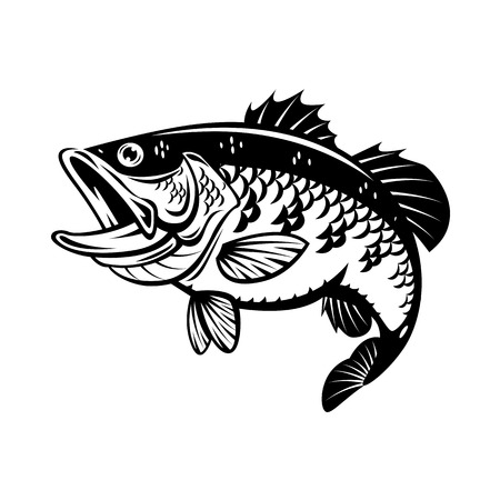 Graphic bass fish icon. Illustration