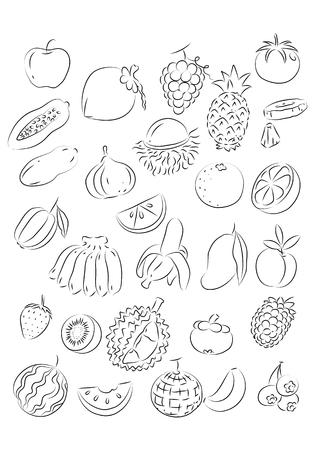 graphic fruit, vector