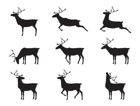 graphic deers