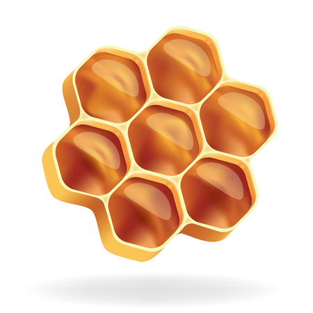 honeycomb Ilustração