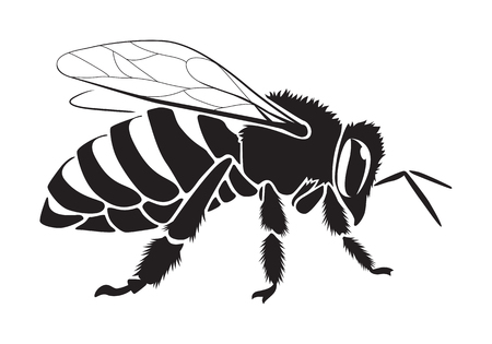 graphic bee