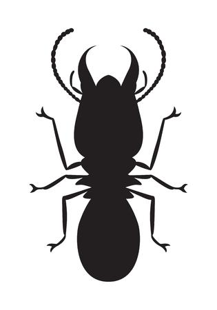 graphic termite