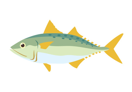 mackerel fish Ilustrace