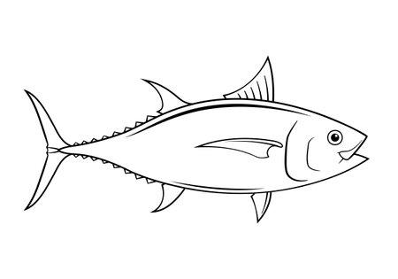 Graphic tuna on white background, vector