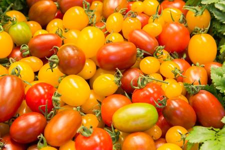 jitomates: Grupo de tomates frescos Foto de archivo