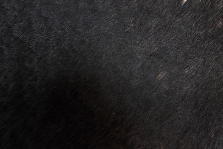 wool texture: Wool texture Stock Photo