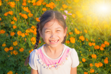 The little girl in the field of cosmos yellow flowers at sunlight in the morning sunlight
