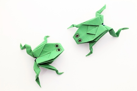 Frog paper photo
