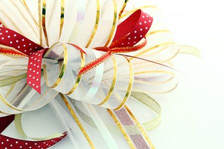 holiday bow photo