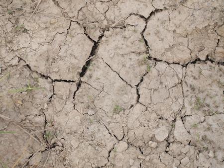 Dry ground. photo