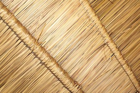 thatch: Thatch grass roofs