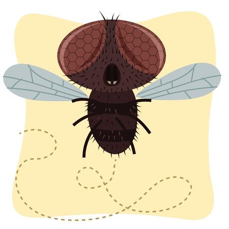 Cartoon illustration of fly.