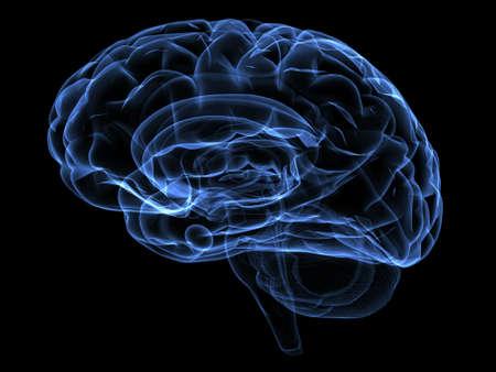 blue brain: Xray image of a human head brain