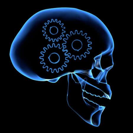 X-ray of a head Stock Photo