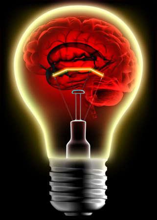 brain storm: Human brain in the lightbulb