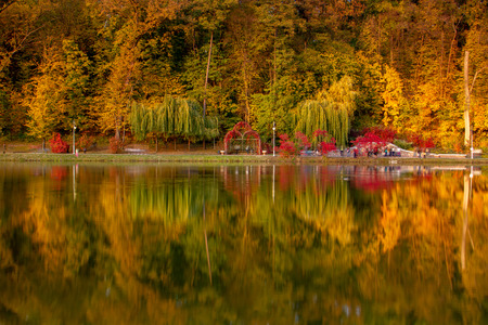 Evening in the autumn city park. Trees are reflected in the pond. Ukraine, Kyiv. Feofania park.