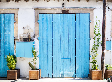 Closed big old blue door with plants at the street. Mediterranean style. photo