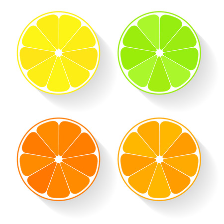 Collection of four citrus fruits icons in flat style. Lemom, lime, orange, mandarine. Vector