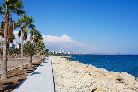 lake shore drive: Walking road ahead near sea beach promenade with palm trees. Travel resort destination