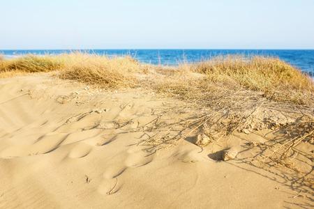 Sand Dunes at the Mediterranean sea. Desert view.