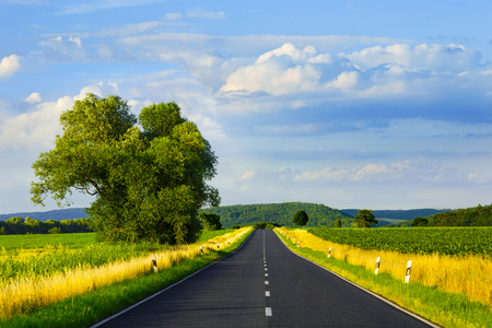 Asphalt straight road through the field and clouds on blue sky in summer day