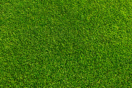Green grass background texture. Golf or footbal field Banco de Imagens