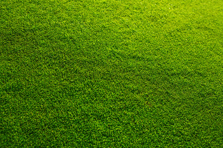 Beautiful fresh green grass texture from golf course