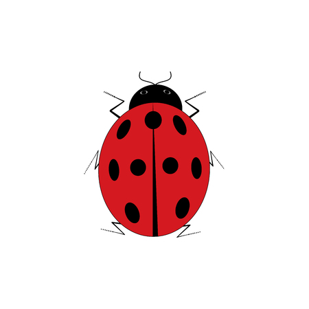 antennas: Ladybird isolated. Illustration ladybug on white background. Cute colorful sign red insect symbol spring, summer, garden. Template for t shirt, apparel, card, poster Design element Vector illustration